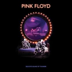 PINK FLOYD - Delicate Sound of Thunder / 2cd / CD