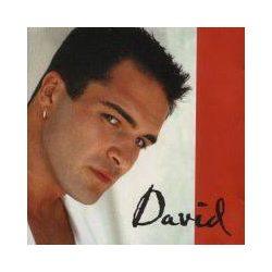 DÁVID - A Szerelem Útján CD