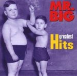 MR.BIG - Greatest Hits CD