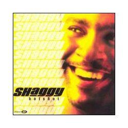 SHAGGY - Hot Shot CD