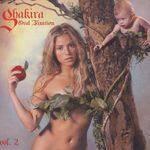 SHAKIRA - Oral Fixation Vol. 2 (new version) CD