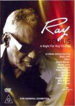 VÁLOGATÁS - Ray Genius A Night For Ray Charles DVD