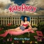 KATY PERRY - One Of The Boys CD