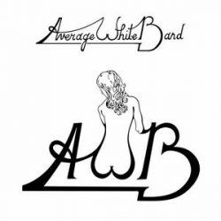 AVERAGE WHITE BAND - AWB / vinyl bakelit / LP