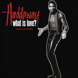 HADDAWAY - What Is Love The Singles Of The 90's / vinyl bakelit / LP