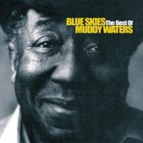 MUDDY WATERS - Blue Skies Best Of CD