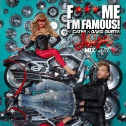DAVID GUETTA - F*** Me I'm Famous Ibiza Mix 2011 CD