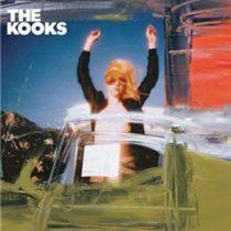 KOOKS - Junk Of The Heart / vinyl bakelit / LP