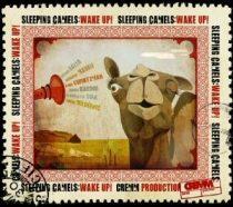 SLEEPING CAMELS - Wake Up! CD