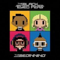 BLACK EYED PEAS - The Beginning / vinyl bakelit / 2xLP