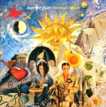 TEARS FOR FEARS - The Seeds Of Love CD