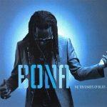 RICHARD BONA - Ten Shades Of Blues CD