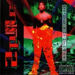 2 PAC - Strictly 4 My Niggaz CD