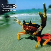 PRODIGY - Fat Of The Land CD