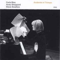 CARLA BLEY, ANDY SHEPPARD, STEVE SWALLOW  - Andando El Tiempo / vinyl bakelit / LP
