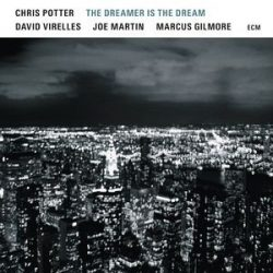 CHRIS POTTER  - Dreamer Is The Dreamer / vinyl bakelit / LP