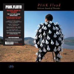 PINK FLOYD - Delicate Sound Of Thunder / vinyl bakelit / 2xLP