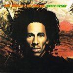BOB MARLEY - Nutty Dread / vinyl bakelit / LP