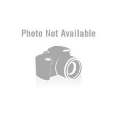 CURE - Seventeen Seconds / vinyl bakelit / LP
