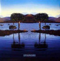 BRUCE DICKINSON - Skunkworks / vinyl bakelit / 2xLP