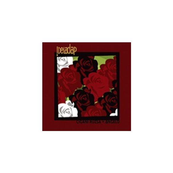DELADAP - Cigani Ruzsa & Angelo / vinyl bakelit / 2xLP