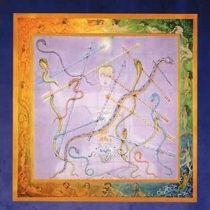 RUSH - Snakes & Arrows / vinyl bakelit / 2xLP