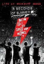 5 SECONDS OF SUMMER - How Did We End Up Here / blu-ray / BRD