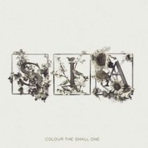 SIA - Colour The Small One CD