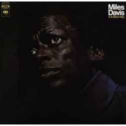 MILES DAVIS - In A Silent Way / vinyl bakelit / LP