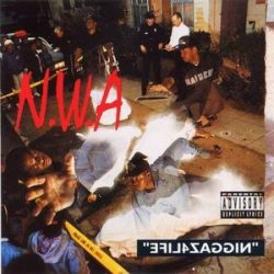 N.W.A - Efil4zaggin / vinyl bakelit / LP