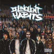 DELINQUENT HABITS - The Delinquent Habits / vinyl bakelit / 2xLP