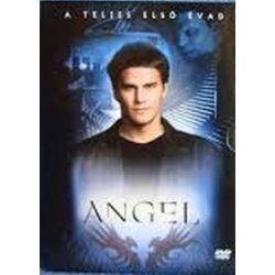 FILM - Angel 1.évad /6dvd/ DVD