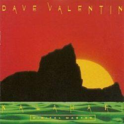 DAVE VALENTIN - Kalahari / vinyl bakelit cut out / LP