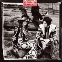 WHITE STRIPES - Icky Thump / vinyl bakelit / LP
