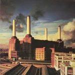 PINK FLOYD - Animals / vinyl bakelit / LP