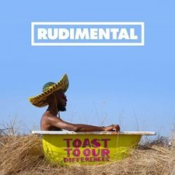 RUDIMENTAL - Toast To Our Differences CD