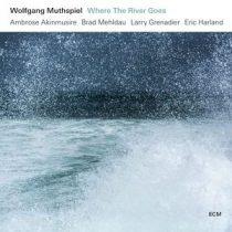 WOLFGANG MUTHSPIEL - Where The River Goes / vinyl bakelit / LP