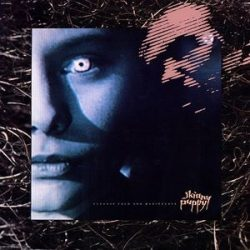 SKINNY PUPPY - Cleanse Fold And Manipulate / vinyl bakelit / LP