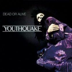 DEAD OR ALIVE - Youthquake /  vinyl bakelit / LP