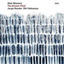 SHAI MAESTRO - Dream Thief / vinyl bakelit / LP