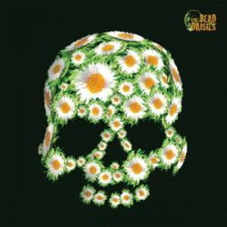 DEAD DAISIES - Dead Daisies / vinyl bakelit / LP