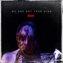 SLIPKNOT - We Are Not Your Kind / vinyl bakelit / 2xLP