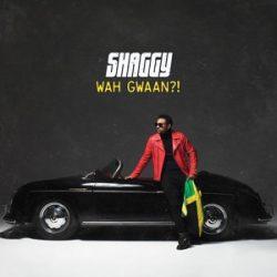 SHAGGY - Wah Gwaan / vinyl bakelit / 2xLP