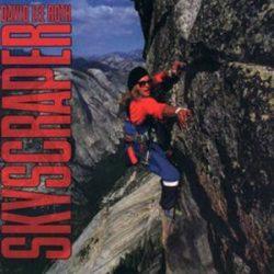 DAVID LE ROTH - Skyscraper / vinyl bakelit / LP