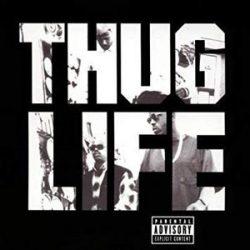 2 PAC - Thug Life / vinyl bakelit / LP