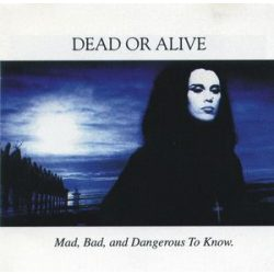 DEAD OR ALIVE - Mad, Bad, and Dangerous To Know / vinyl bakelit / LP