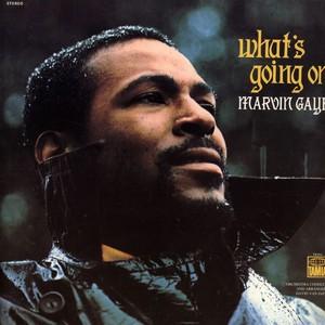 MARVIN GAYE - What's Going On / vinyl bakelit / LP