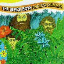 BEACH BOYS - Endless Summer best of / vinyl bakelit / 2xLP