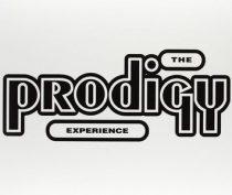 PRODIGY - Experience / vinyl bakelit/ LP